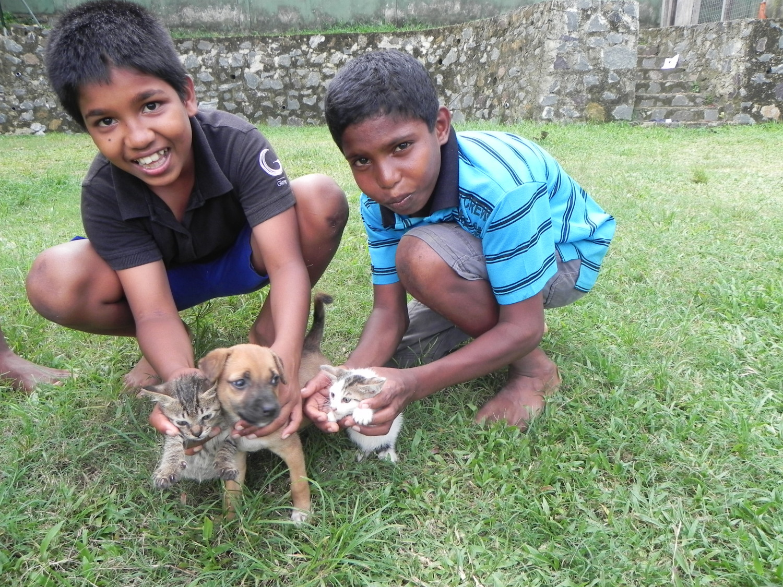 Wie helpt Stichting Weeshuis Sri Lanka